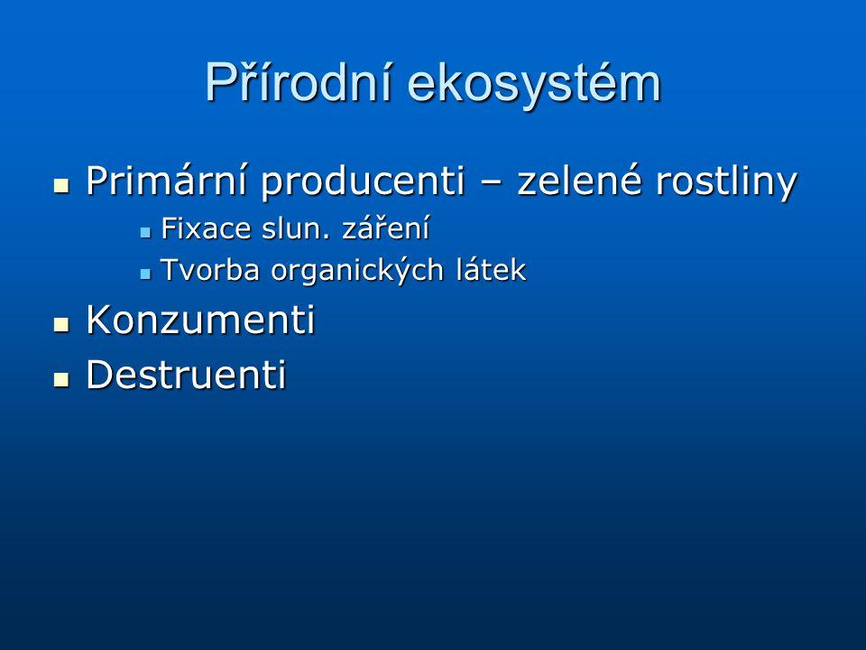 Přírodní ekosystém Primární producenti – zelené rostliny Primární producenti – zelené rostliny Fixace slun. záření Fixace slun. záření Tvorba organick