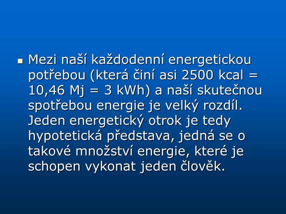 Mezi naší každodenní energetickou potřebou (která činí asi 2500 kcal = 10,46 Mj = 3 kWh) a naší skutečnou spotřebou energie je velký rozdíl. Jeden ene