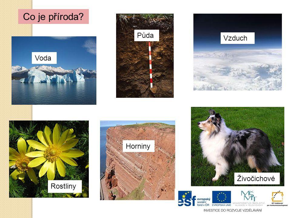 Co je příroda? VodaPůda Vzduch Rostliny Horniny Živočichové