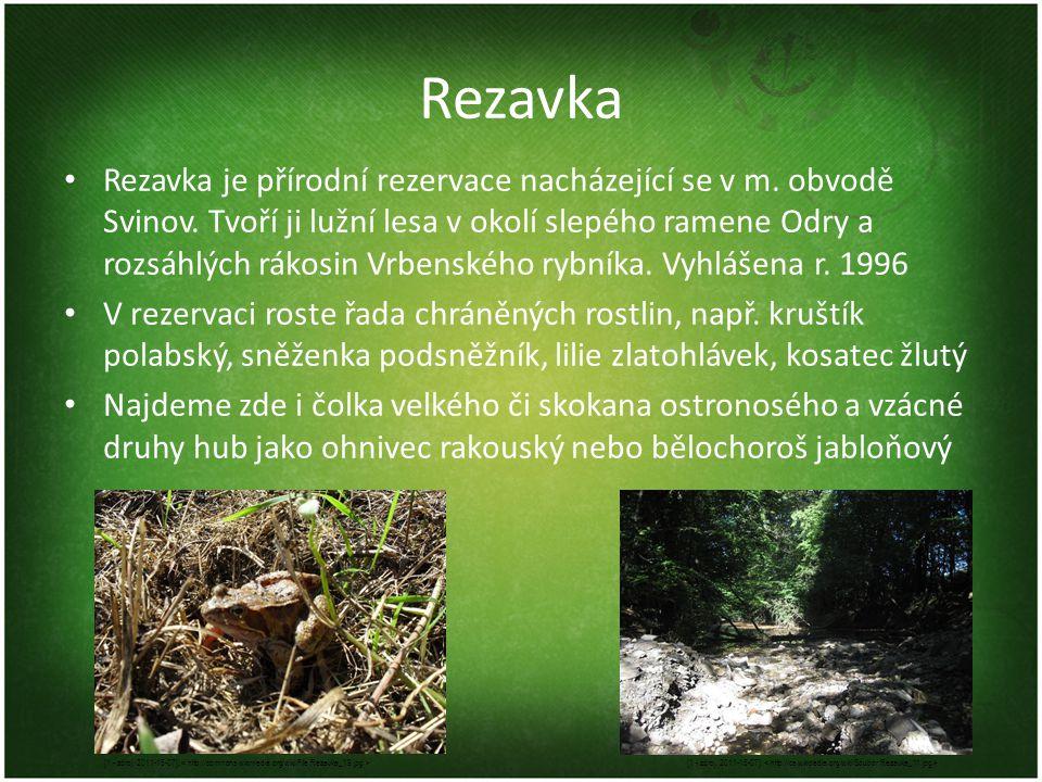 Rezavka Rezavka je přírodní rezervace nacházející se v m. obvodě Svinov. Tvoří ji lužní lesa v okolí slepého ramene Odry a rozsáhlých rákosin Vrbenské