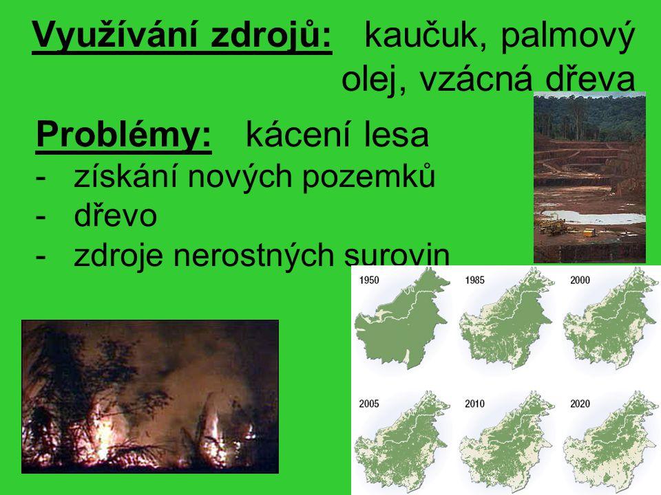 Využívání zdrojů: kaučuk, palmový olej, vzácná dřeva Problémy: kácení lesa - získání nových pozemků - dřevo - zdroje nerostných surovin