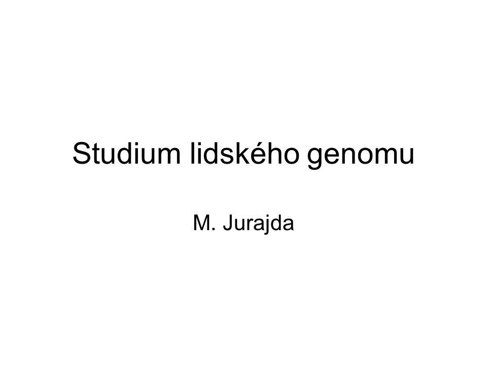 Studium lidského genomu M. Jurajda