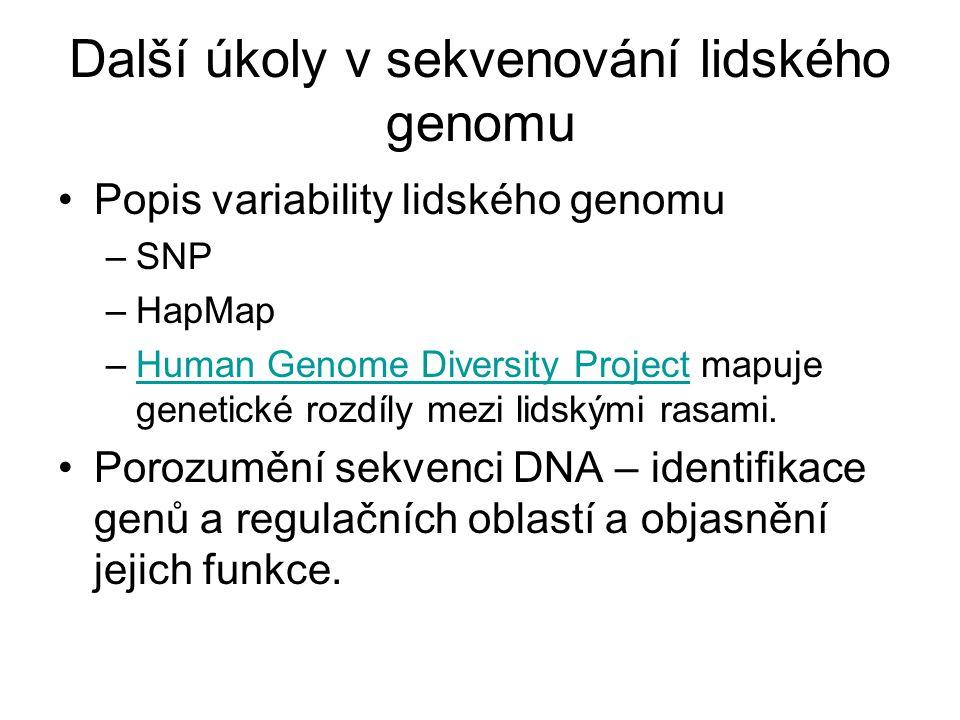 Další úkoly v sekvenování lidského genomu Popis variability lidského genomu –SNP –HapMap –Human Genome Diversity Project mapuje genetické rozdíly mezi