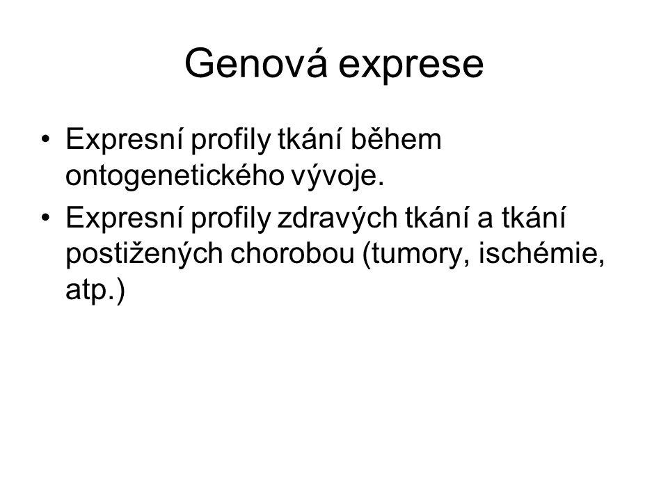 Genová exprese Expresní profily tkání během ontogenetického vývoje. Expresní profily zdravých tkání a tkání postižených chorobou (tumory, ischémie, at
