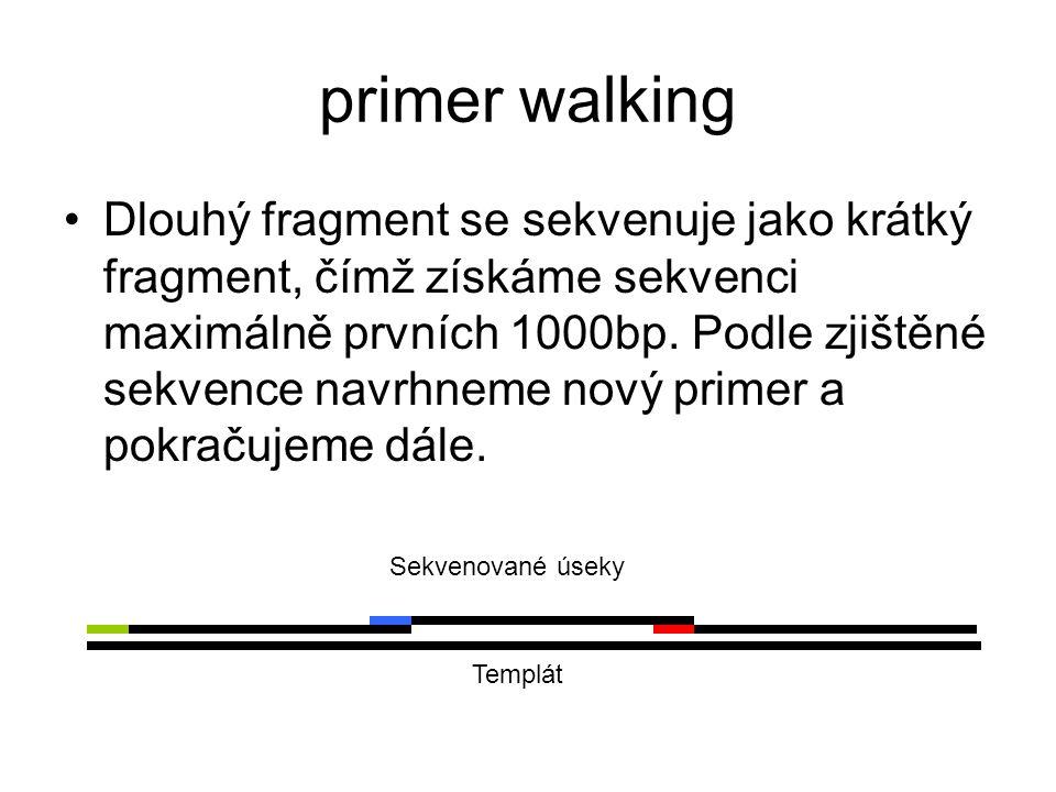 primer walking Dlouhý fragment se sekvenuje jako krátký fragment, čímž získáme sekvenci maximálně prvních 1000bp. Podle zjištěné sekvence navrhneme no