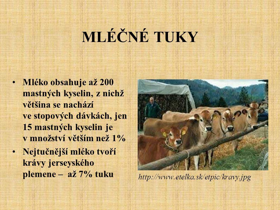 MLÉČNÉ TUKY Mléko obsahuje až 200 mastných kyselin, z nichž většina se nachází ve stopových dávkách, jen 15 mastných kyselin je v množství větším než 1% Nejtučnější mléko tvoří krávy jerseyského plemene – až 7% tuku http://www.etelka.sk/etpic/kravy.jpg