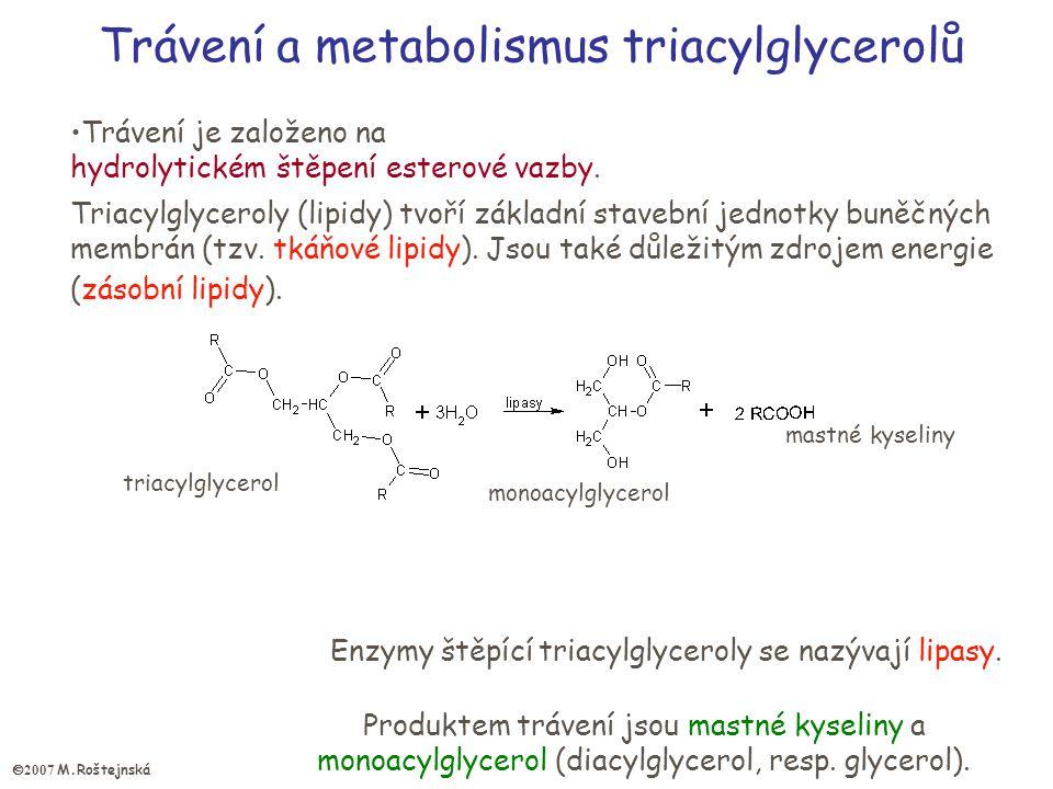 Trávení a metabolismus triacylglycerolů Trávení je založeno na hydrolytickém štěpení esterové vazby.
