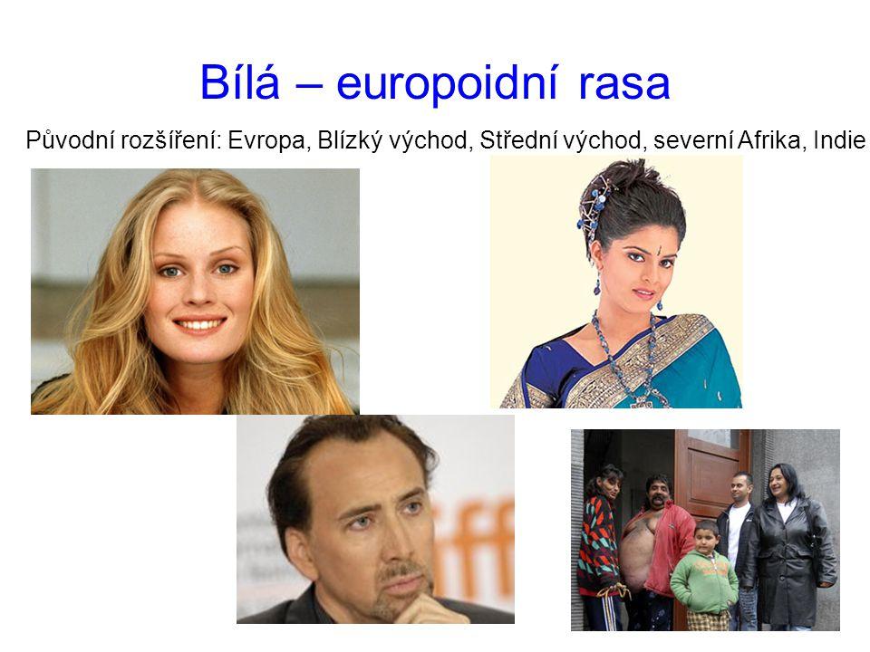 Bílá – europoidní rasa Původní rozšíření: Evropa, Blízký východ, Střední východ, severní Afrika, Indie