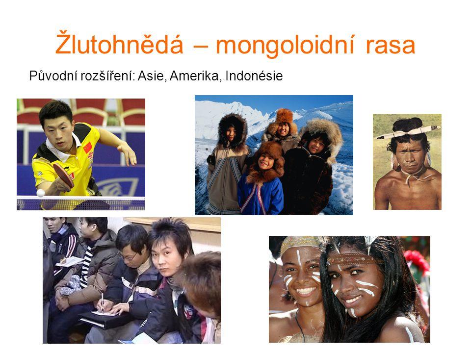Žlutohnědá – mongoloidní rasa Původní rozšíření: Asie, Amerika, Indonésie