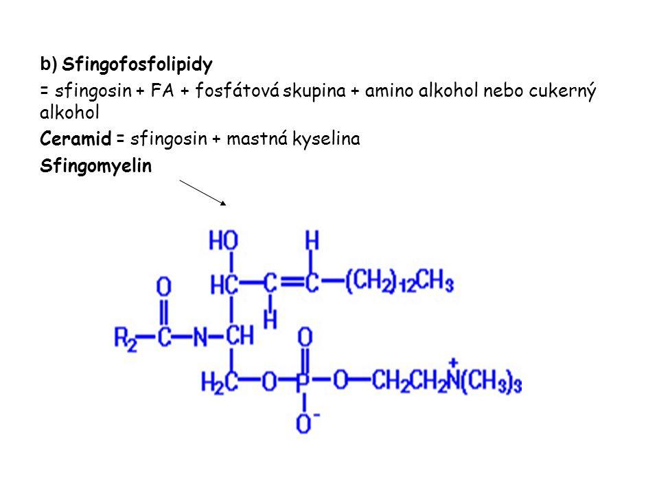b) Sfingofosfolipidy = sfingosin + FA + fosfátová skupina + amino alkohol nebo cukerný alkohol Ceramid = sfingosin + mastná kyselina Sfingomyelin