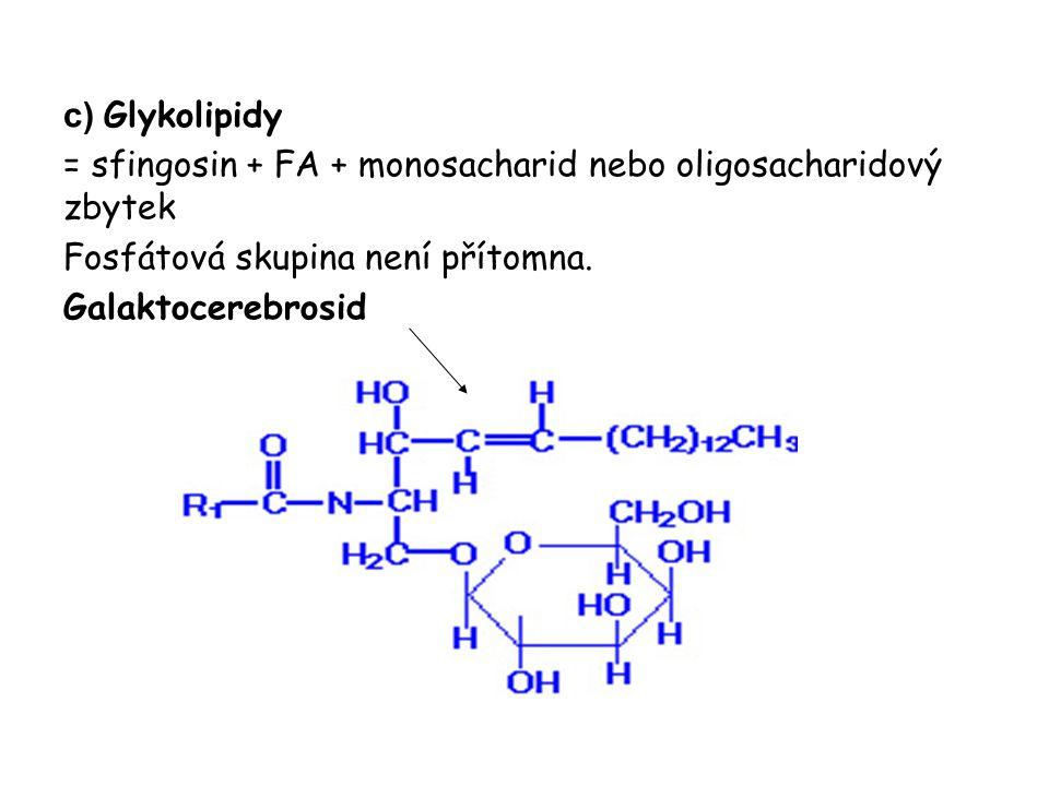 c) Glykolipidy = sfingosin + FA + monosacharid nebo oligosacharidový zbytek Fosfátová skupina není přítomna. Galaktocerebrosid