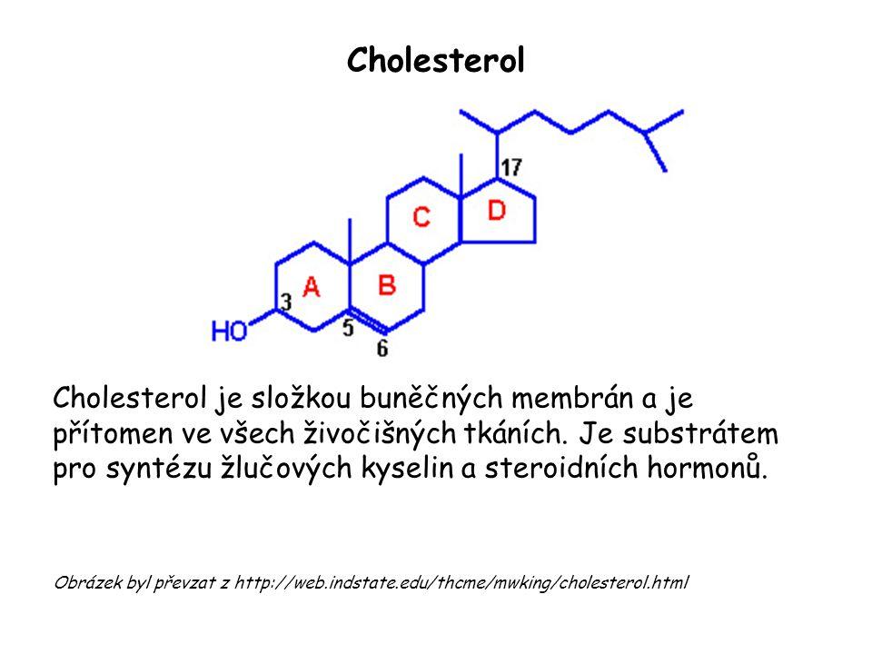 Cholesterol Cholesterol je složkou buněčných membrán a je přítomen ve všech živočišných tkáních. Je substrátem pro syntézu žlučových kyselin a steroid
