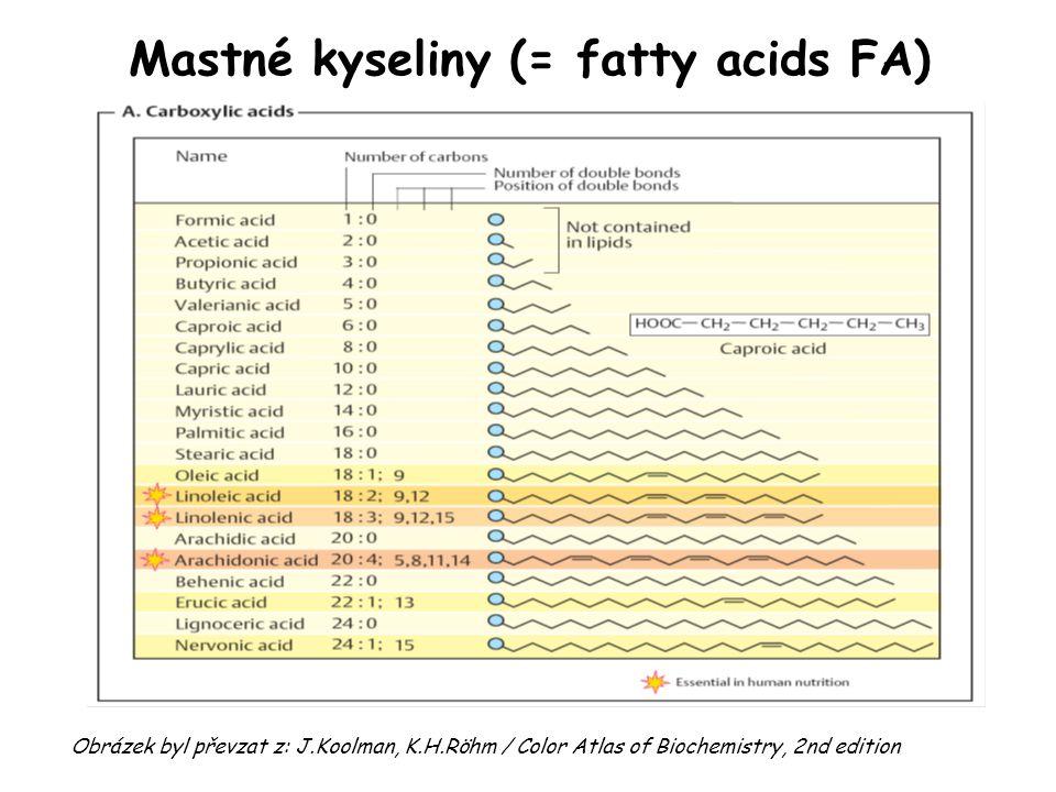 Mastné kyseliny (= fatty acids FA) Obrázek byl převzat z: J.Koolman, K.H.Röhm / Color Atlas of Biochemistry, 2nd edition