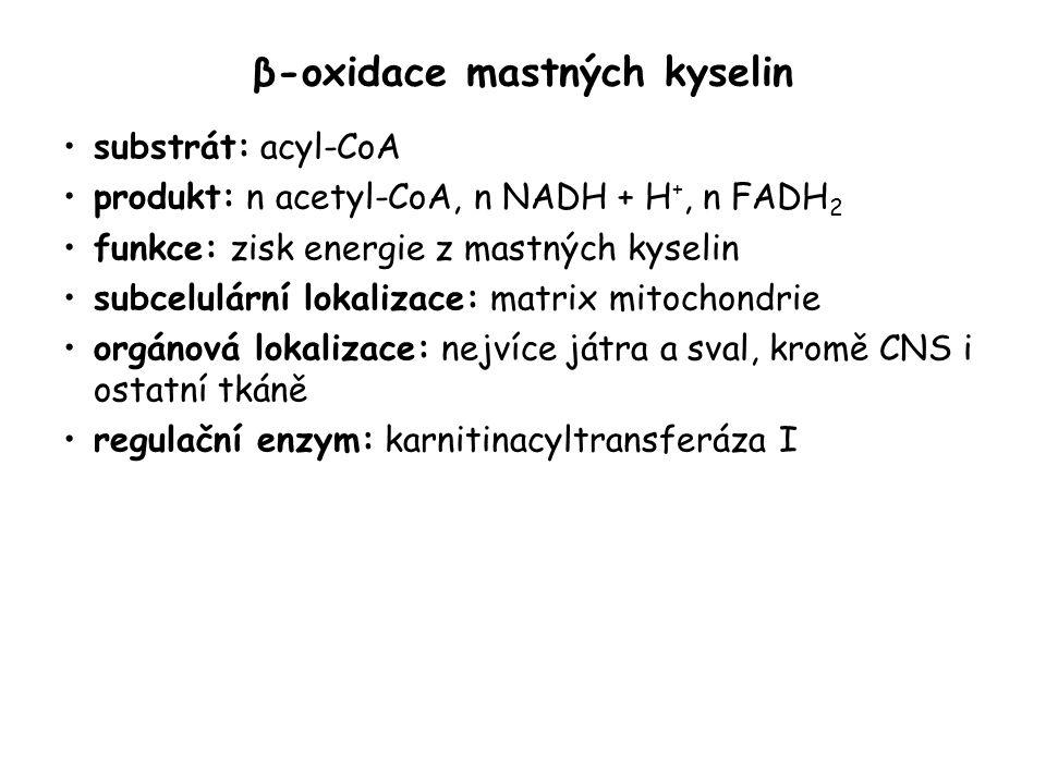 β-oxidace mastných kyselin substrát: acyl-CoA produkt: n acetyl-CoA, n NADH + H +, n FADH 2 funkce: zisk energie z mastných kyselin subcelulární lokal