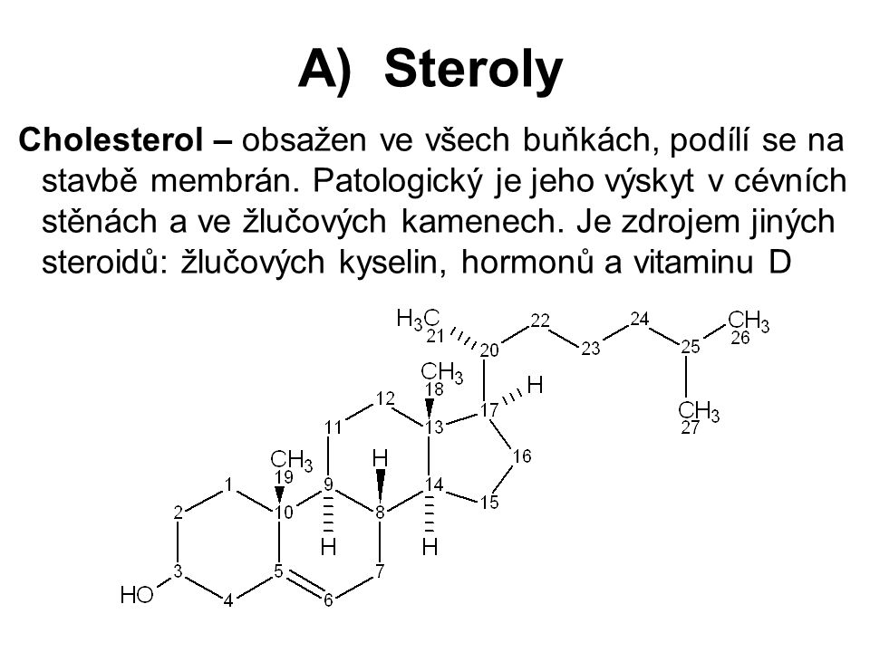 A) Steroly Cholesterol – obsažen ve všech buňkách, podílí se na stavbě membrán. Patologický je jeho výskyt v cévních stěnách a ve žlučových kamenech.