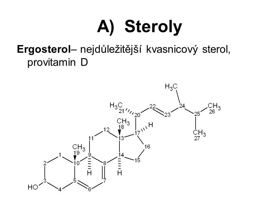 A) Steroly Ergosterol– nejdůležitější kvasnicový sterol, provitamin D