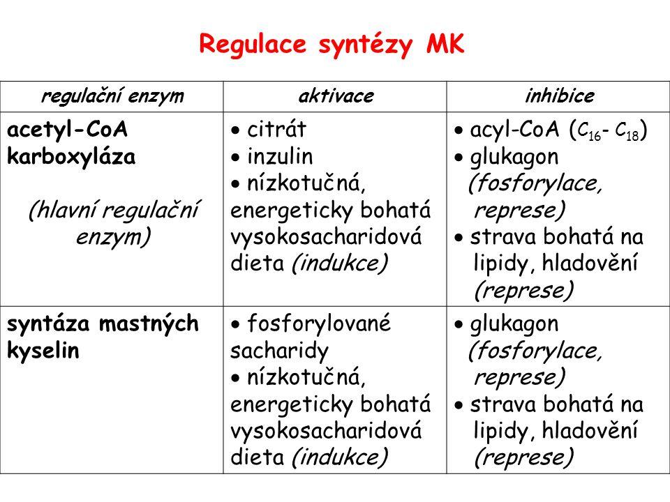 regulační enzymaktivaceinhibice acetyl-CoA karboxyláza (hlavní regulační enzym)  citrát  inzulin  nízkotučná, energeticky bohatá vysokosacharidová