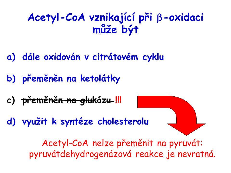 Acetyl-CoA vznikající při  -oxidaci může být a)dále oxidován v citrátovém cyklu b)přeměněn na ketolátky c)přeměněn na glukózu !!! d)využit k syntéze