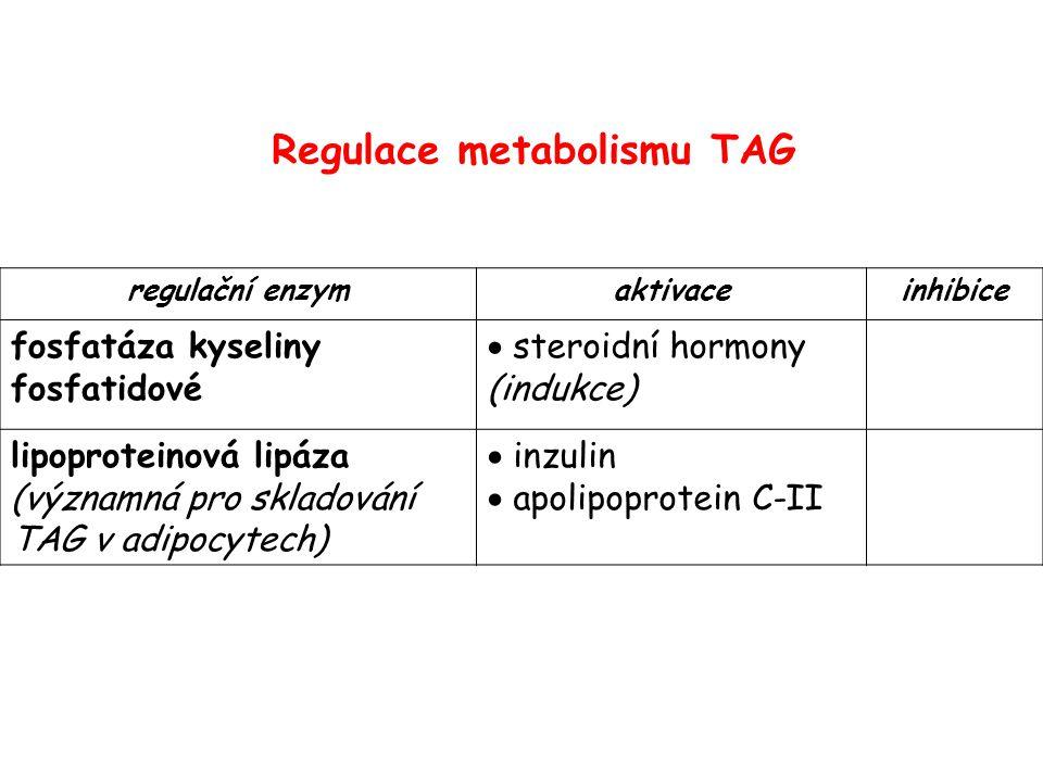 regulační enzymaktivaceinhibice fosfatáza kyseliny fosfatidové  steroidní hormony (indukce) lipoproteinová lipáza (významná pro skladování TAG v adip