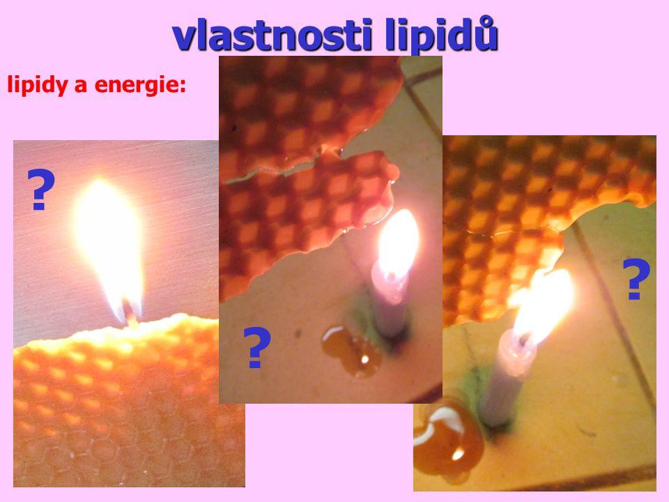 vlastnosti lipidů lipidy a energie: ? ? ?