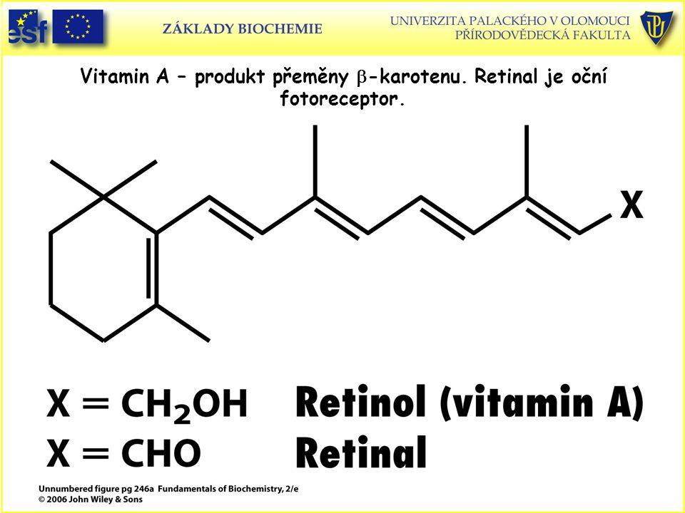 Vitamin A – produkt přeměny  -karotenu. Retinal je oční fotoreceptor.