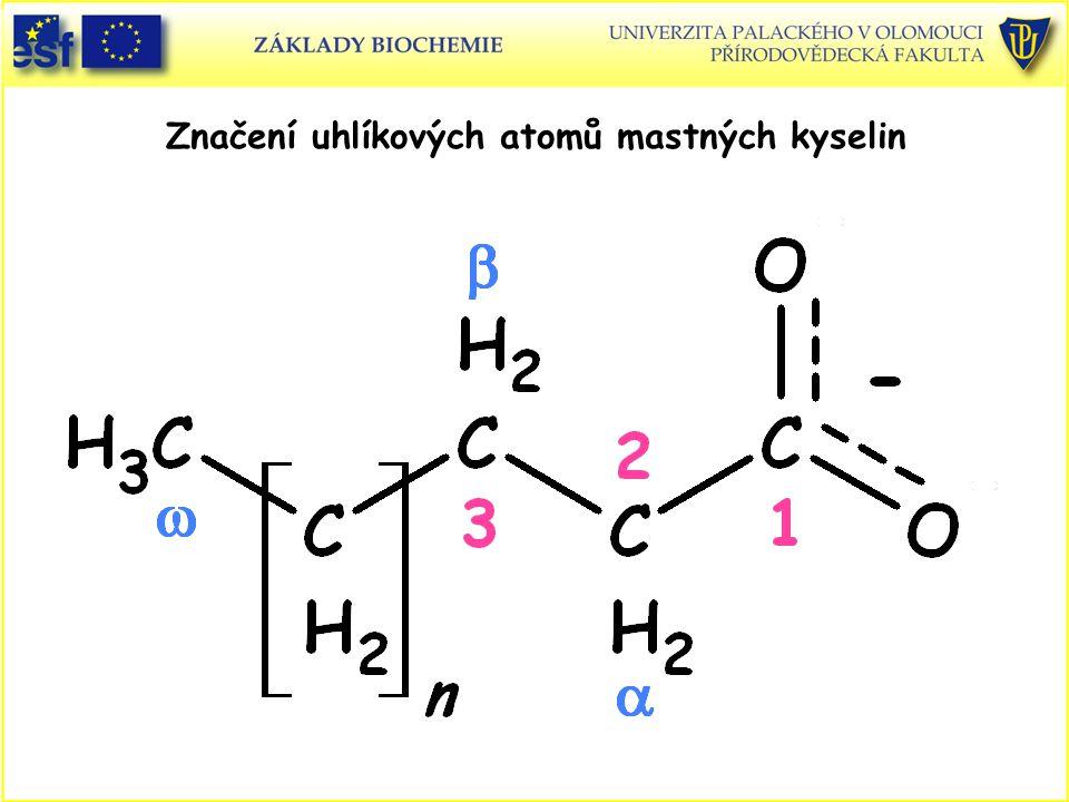 Některé přírodní živočišné mastné kyseliny Počet C Počet dvojných NázevSystematický názeb vazeb 12 0Laurován-dodekanová 14 0Myristován-tetradekanová 16 0Palmitován-hexadekanová 18 0Stearován-oktadekanová 20 0Arachidován-eikosanová 22 0Behenován-dokosanová 24 0Lignocerován-tetrakosanová 16 1Palmitolejovácis-  9 -hexadecenová 18 1Olejovácis-  9 - oktadecenová 18 2Linoleovácis, cis-  9,  12 -oktadekadienová 18 3Linolenováall-cis-  9,  12,  15 -oktadekatrienová 20 4Arachidonováall-cis-  5,  8,  11,  14 -eikosatetraenová