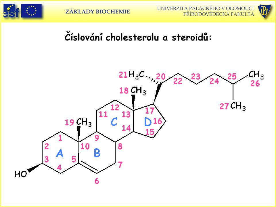 Číslování cholesterolu a steroidů:
