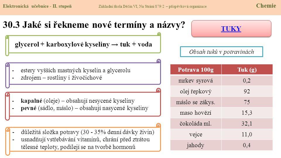 30.3 Jaké si řekneme nové termíny a názvy.Elektronická učebnice - II.