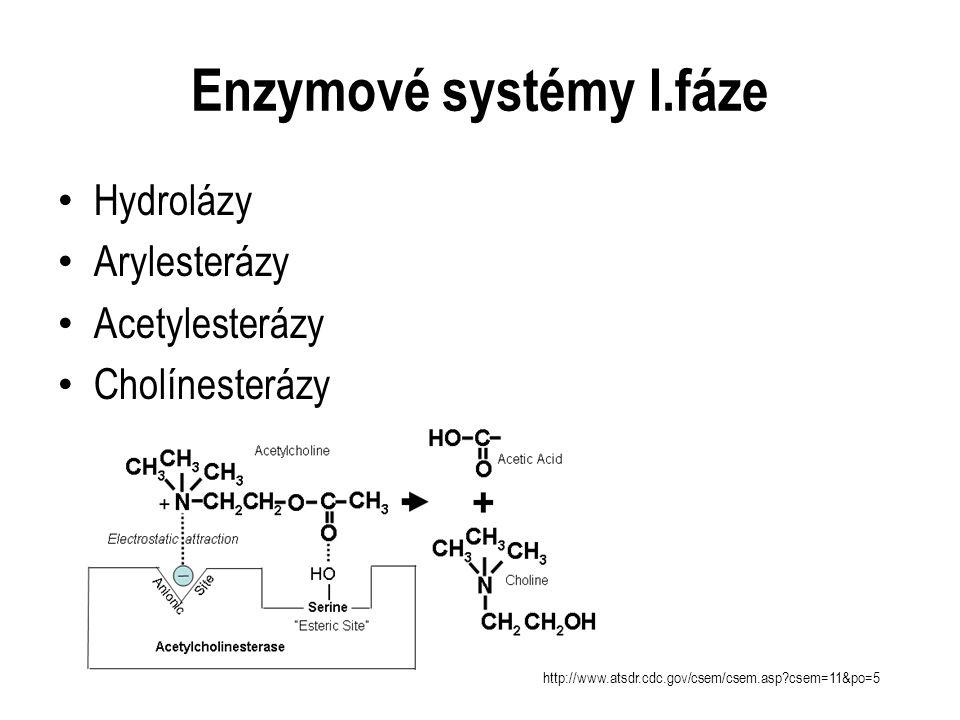 Hydrolázy Arylesterázy Acetylesterázy Cholínesterázy Enzymové systémy I.fáze http://www.atsdr.cdc.gov/csem/csem.asp?csem=11&po=5