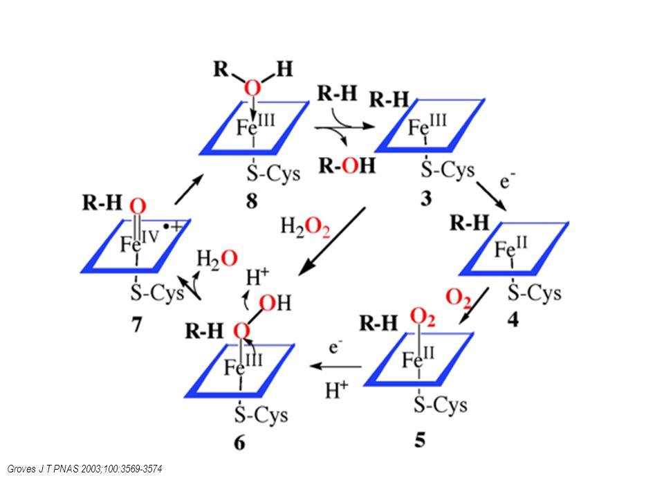 Groves J T PNAS 2003;100:3569-3574