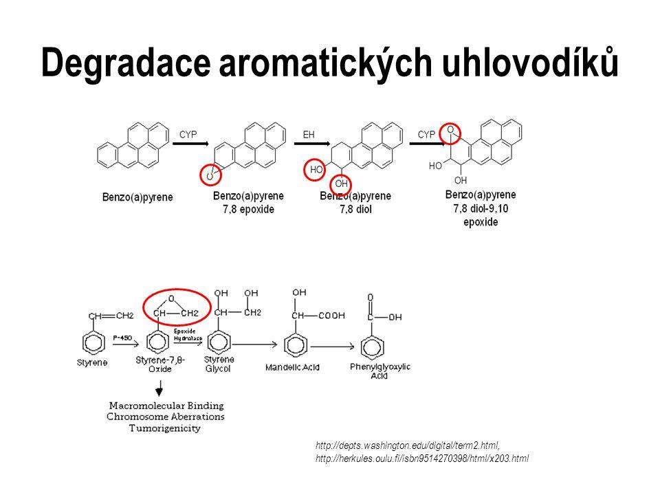 Degradace aromatických uhlovodíků http://depts.washington.edu/digital/term2.html, http://herkules.oulu.fi/isbn9514270398/html/x203.html