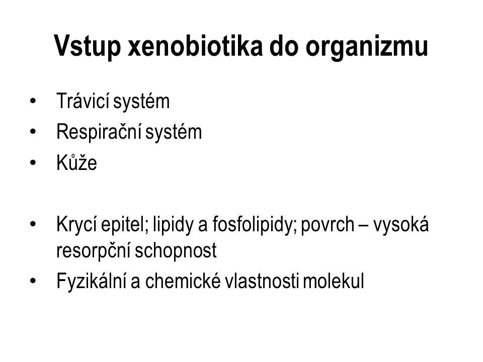 Biotransformace xenobiotik Enzymatická konverze (většinou) Lokalizace: játra, ledviny, plíce, GIT, mozek … Endoplazmatické retikulum a cytosol