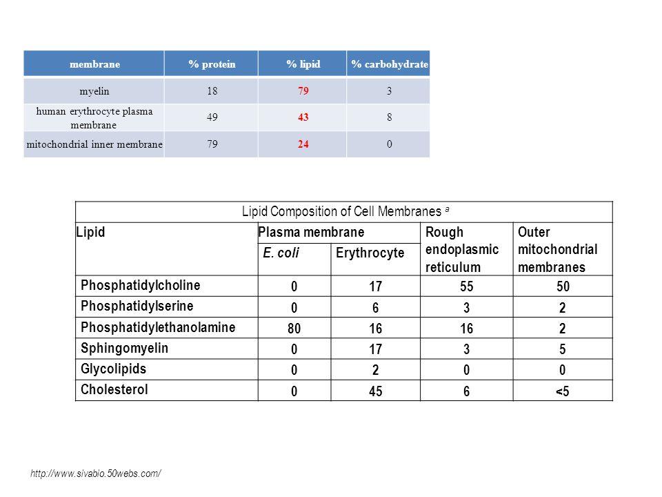 Biotransformace xenobiotik I fáze: mikrosomy Oxidace, hydroxylace, deaminace, epoxidace, sulfoxidace, N- oxidace, hydrolýzy II.fáze: cytosol Konjugace Zvýšení polarity molekuly