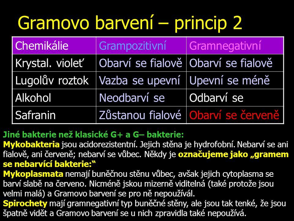 Gramovo barvení – princip 2 ChemikálieGrampozitivníGramnegativní Krystal. violeťObarví se fialově Lugolův roztokVazba se upevníUpevní se méně AlkoholN