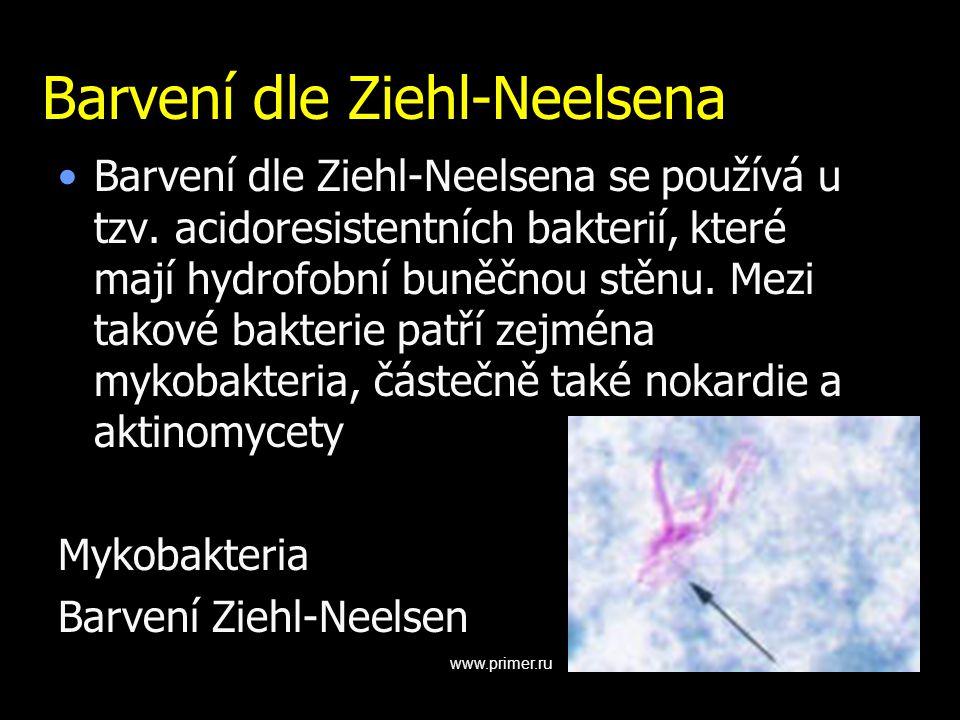 Barvení dle Ziehl-Neelsena Barvení dle Ziehl-Neelsena se používá u tzv. acidoresistentních bakterií, které mají hydrofobní buněčnou stěnu. Mezi takové