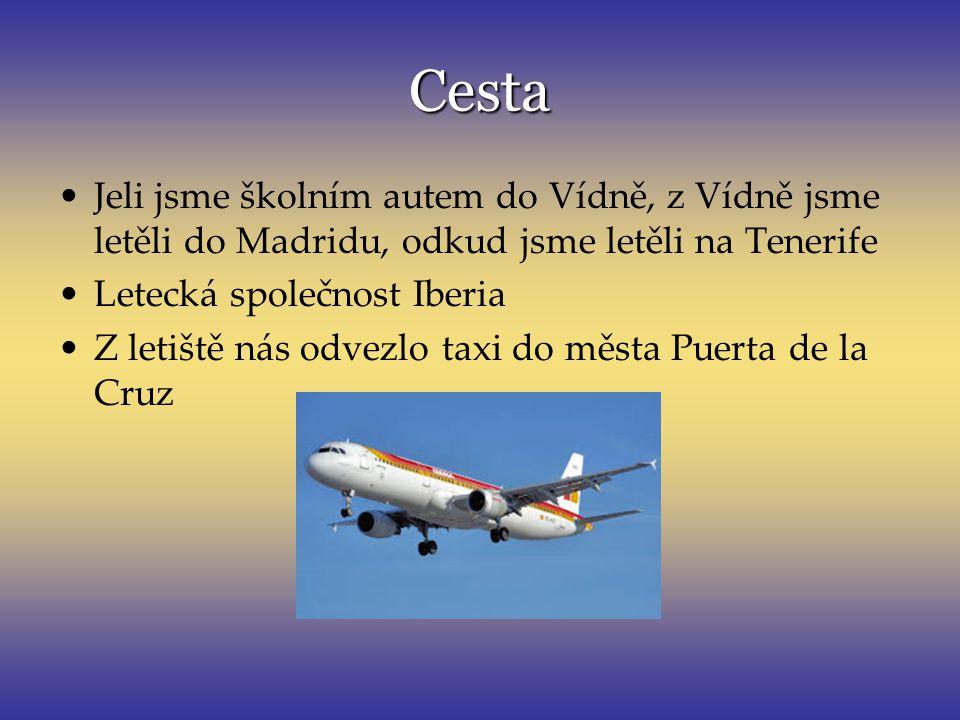 Cesta Jeli jsme školním autem do Vídně, z Vídně jsme letěli do Madridu, odkud jsme letěli na Tenerife Letecká společnost Iberia Z letiště nás odvezlo