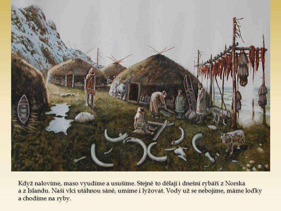 Když nalovíme, maso vyudíme a usušíme. Stejně to dělají i dnešní rybáři z Norska a z Islandu. Naši vlci utáhnou sáně, umíme i lyžovat. Vody už se nebo