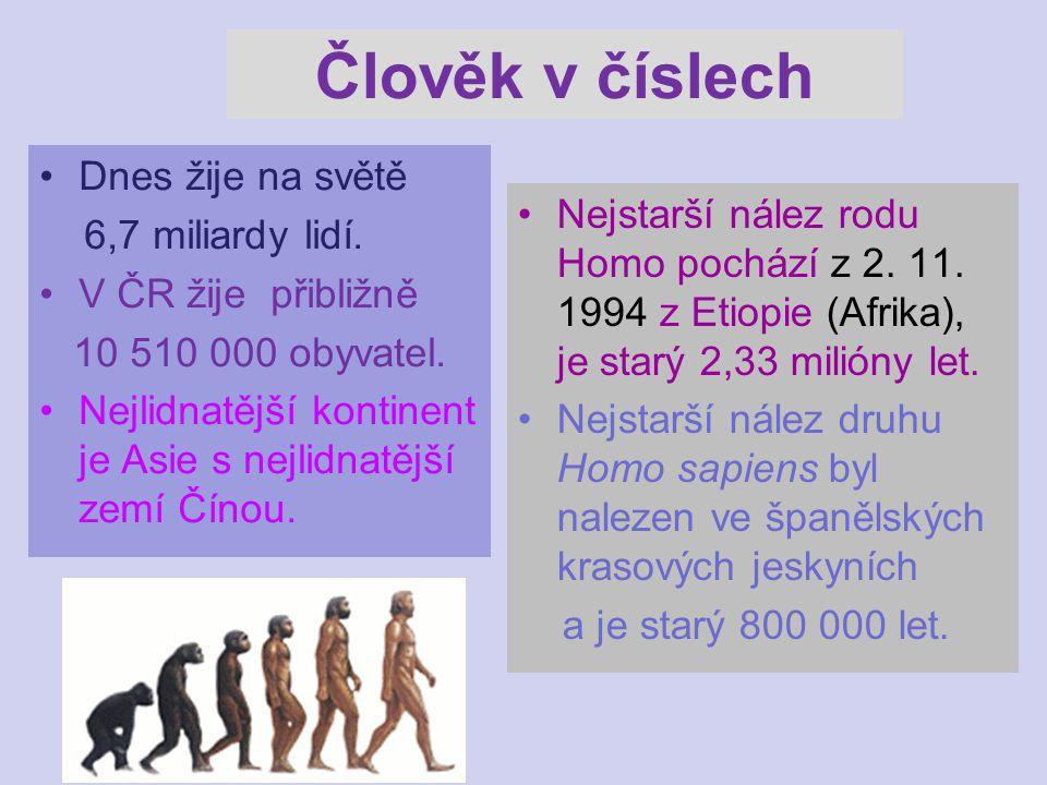 Člověk v číslech Dnes žije na světě 6,7 miliardy lidí. V ČR žije přibližně 10 510 000 obyvatel. Nejlidnatější kontinent je Asie s nejlidnatější zemí Č