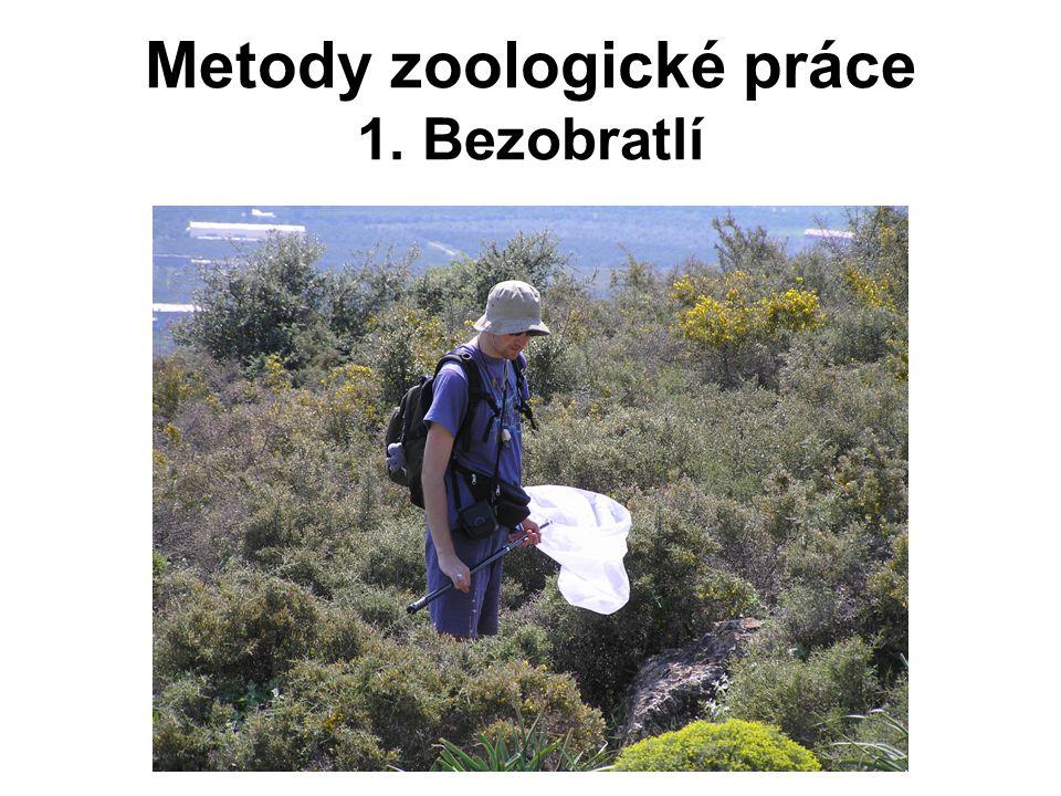 Bezobratlí (~ bezestrunní) všechny kmeny živočichů kromě Chordata mnoho různých metod průzkumu zahrnují i jednobuněčné – živočišnou část říše Protista