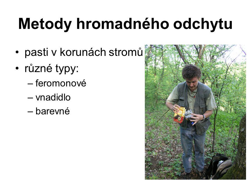 Metody hromadného odchytu pasti v korunách stromů různé typy: –feromonové –vnadidlo –barevné
