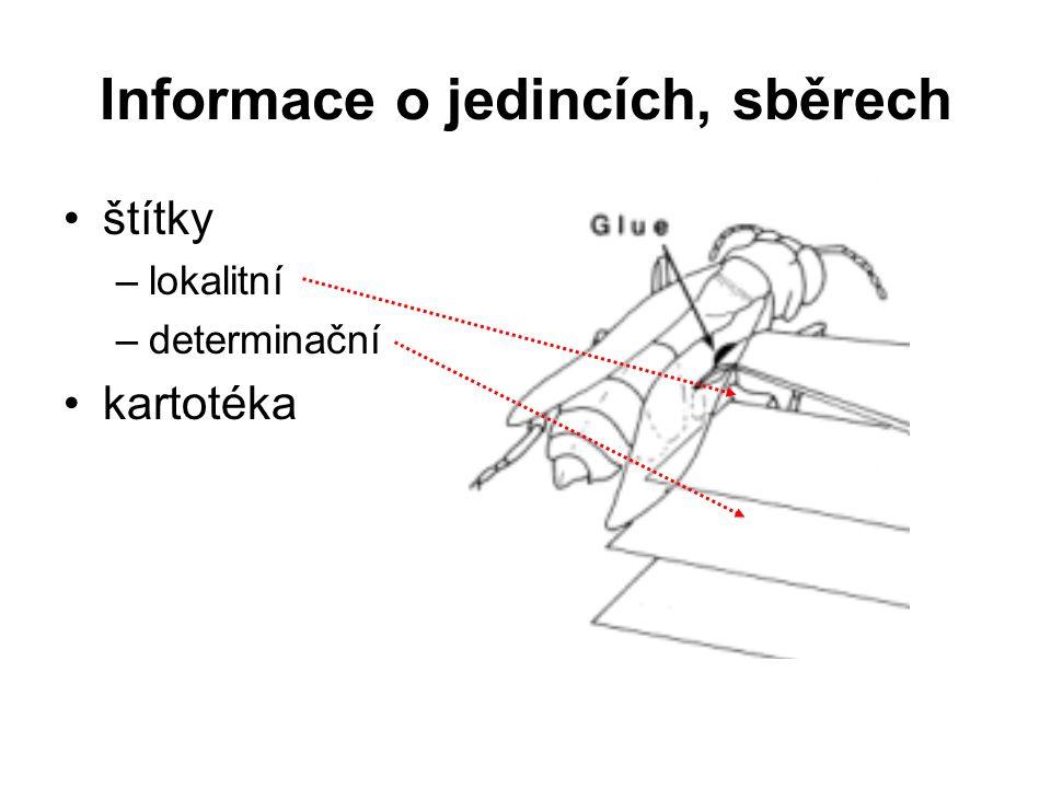 Informace o jedincích, sběrech štítky –lokalitní –determinační kartotéka