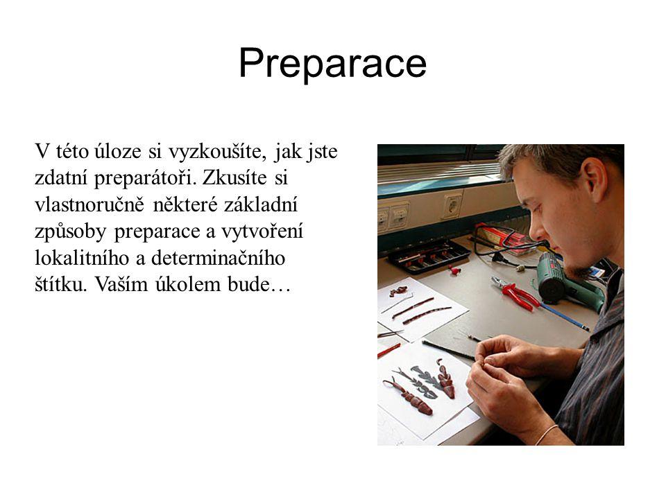Preparace V této úloze si vyzkoušíte, jak jste zdatní preparátoři. Zkusíte si vlastnoručně některé základní způsoby preparace a vytvoření lokalitního