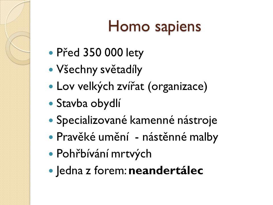 Homo sapiens Před 350 000 lety Všechny světadíly Lov velkých zvířat (organizace) Stavba obydlí Specializované kamenné nástroje Pravěké umění - nástěnn