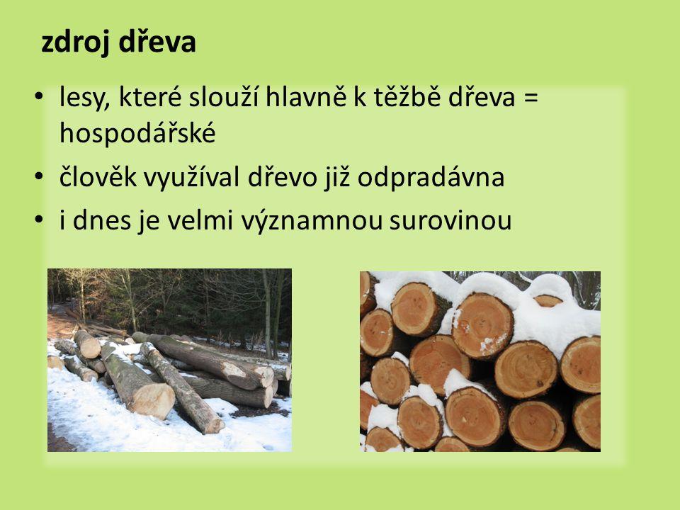 zdroj dřeva lesy, které slouží hlavně k těžbě dřeva = hospodářské člověk využíval dřevo již odpradávna i dnes je velmi významnou surovinou
