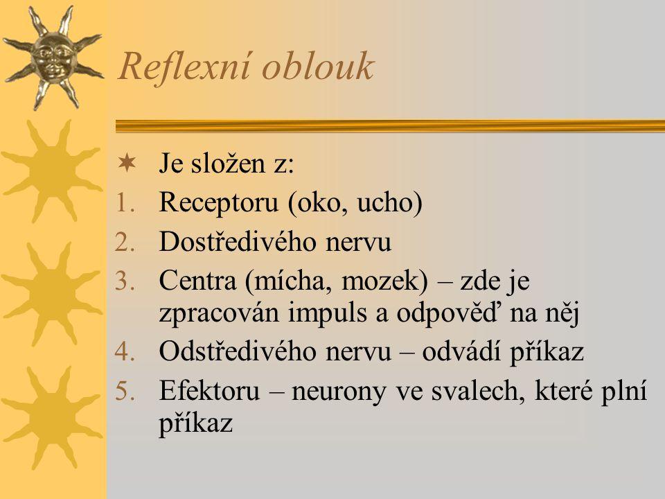 Reflexní oblouk  Je složen z: 1. Receptoru (oko, ucho) 2. Dostředivého nervu 3. Centra (mícha, mozek) – zde je zpracován impuls a odpověď na něj 4. O