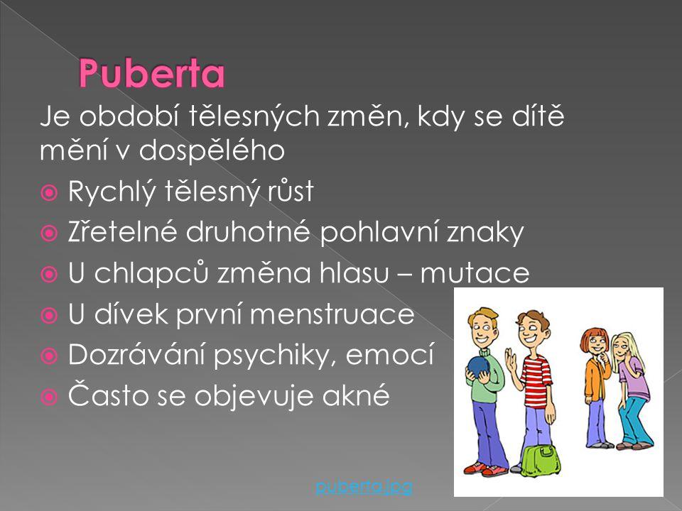 Dělíme na: › Mladší školní věk (6-11 let)  Nástup do školního vzdělávání  Výměna chrupu  Rozvoj jemné motoriky (psaní) › Starší školní věk (11-15 l