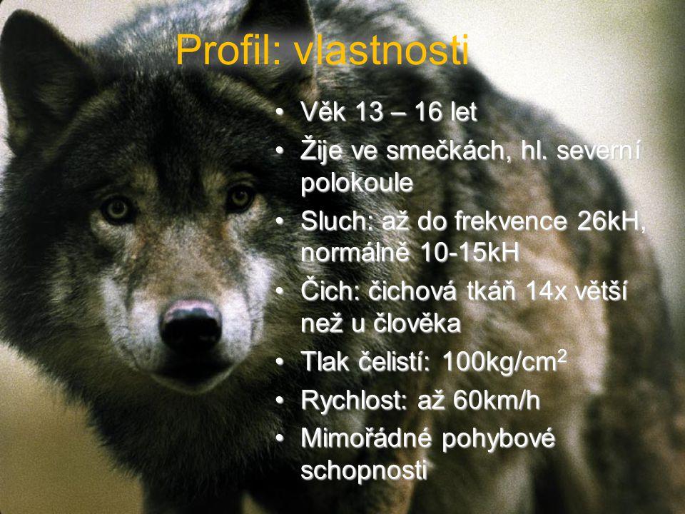 Profil: vlastnosti Věk 13 – 16 letVěk 13 – 16 let Žije ve smečkách, hl.