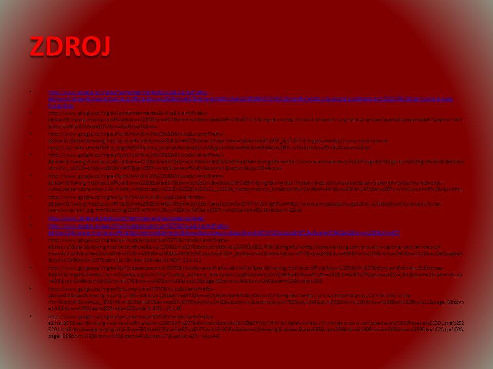 ZDROJ http://www.google.cz/imgres?q=martes+martes&hl=cs&client=firefox- a&hs=wFn&sa=X&rls=org.mozilla:cs:official&biw=1280&bih=637&tbm=isch&tbnid=5UMzfQdBsWNhHM:&imgrefurl=http://quiprona.wordpress.com/2010/06/18/carnivoros-e-suas- frutas/&do http://www.google.cz/imgres?q=martes+martes&hl=cs&client=firefox- a&hs=wFn&sa=X&rls=org.mozilla:cs:official&biw=1280&bih=637&tbm=isch&tbnid=5UMzfQdBsWNhHM:&imgrefurl=http://quiprona.wordpress.com/2010/06/18/carnivoros-e-suas- frutas/&do http://www.google.cz/imgres?q=martes+martes&hl=cs&client=firefox- a&sa=X&rls=org.mozilla:cs:official&biw=1280&bih=637&tbm=isch&tbnid=SoOJPoMfpGTlxM:&imgrefurl=http://www2.elkarrekin.org/web/arranobe/apartados/apartado0/lepahori.htm &docid=GVpGXXfyebtQTM&w=350&h=200&ei= http://www.google.cz/imgres?q=KUNA+SKALN%C3%8D&hl=cs&client=firefox- a&hs=2Ln&sa=X&rls=org.mozilla:cs:official&biw=1280&bih=637&tbm=isch&prmd=ivns&tbnid=3N1dEP_6jsTx8M:&imgrefurl=http://www.ms-smilovice- reka.ic.cz/index.php%253Fid_page%253Darticle_toulky&docid=aza1xKA5jgnxwM&w=555&h=398&ei=ijZBTv-wMs3LswbkwfDuBw&zoom=1&iac http://www.google.cz/imgres?q=KUNA+SKALN%C3%8D&hl=cs&client=firefox- a&sa=X&rls=org.mozilla:cs:official&biw=1280&bih=637&tbm=isch&tbnid=0DO3AdN5aiDfaM:&imgrefurl=http://www.svarohactive.cz/%253Fpage%253Dgallery%2526giid%253D366&doc id=xXSv_oXZUD--bM&w=800&h=497&ei=ijZBTv-wMs3LswbkwfDuBw&zoom=1&iact=hc&vpx=394&vpy= http://www.google.cz/imgres?q=KUNA+SKALN%C3%8D&hl=cs&client=firefox- a&sa=X&rls=org.mozilla:cs:official&biw=1280&bih=637&tbm=isch&tbnid=yptwks1EK7ld9M:&imgrefurl=http://hobby.idnes.cz/kuna-a-kocka-se-na-stejnem-pozemku-nesnesou- vyzkousejte-lidske-vlasy-12k-/hobby-mazlicci.aspx%253Fc%253DA100312_113334_hobby-mazlicci_bma&docid=32JIklf6eX-4dM&w=630&h=472&ei=ijZBTv-wMs3LswbkwfDuBw&zoom= http://www.google.cz/imgres?q=KUNA+SKALNÍ&hl=cs&client=firefox- a&sa=X&rls=org.mozilla:cs:official&biw=1280&bih=637&tbm=isch&tbnid=rytsodWtwXDWVM:&imgrefurl=http://www.evropskeselmy.estranky.cz/fotoalbum/kuna-lesni/kuna-