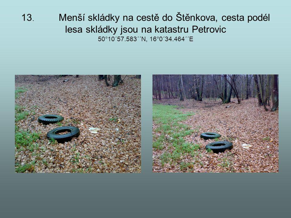 13. Menší skládky na cestě do Štěnkova, cesta podél lesa skládky jsou na katastru Petrovic 50°10´57.583´´N, 16°0´34.464´´E