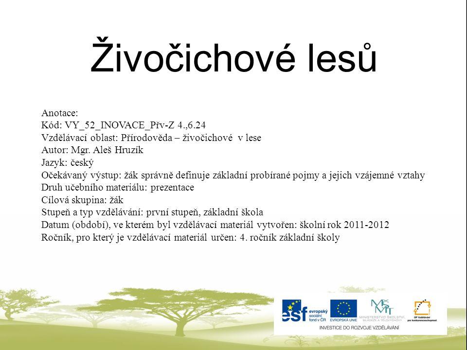 Živočichové lesů Anotace: Kód: VY_52_INOVACE_Přv-Z 4.,6.24 Vzdělávací oblast: Přírodověda – živočichové v lese Autor: Mgr. Aleš Hruzík Jazyk: český Oč